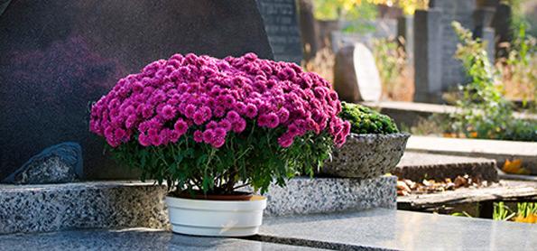זר פרחים לצד המצבה