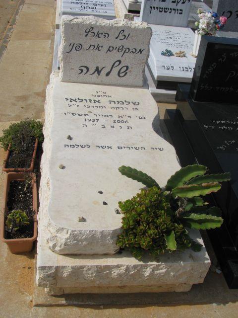 סוג מצבה משילוב צמחיה במצבה אבן חברון
