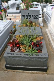 מצבה באשדוד מאבן גרניט עם שילוב חצץ וצמחים