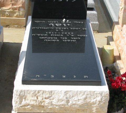 מצבות משולבות עם אבן סלייב